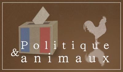 Politique-animaux.fr: Quelle place nos politiciens accordent-ils aux animaux ?