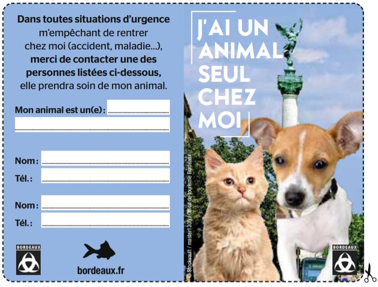 Carte d'informations personnelles pour animaux de compagnie