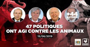 Logo En 2019, ces maires accueillent le cirque Medrano qui détient des animaux