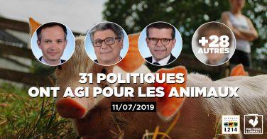 Logo 14 députés demandent un renforcement des normes encadrant l'élevage des poulets