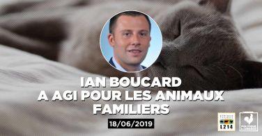 Logo Le député Ian Boucard  demande la généralisation des campagnes de stérilisation des chats libres