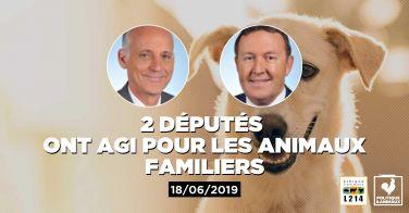 Logo 2 députés demandent au gouvernement d'intervenir auprès de la Chine pour mettre fin au festival de Yulin où des chiens et des chats sont massacrés
