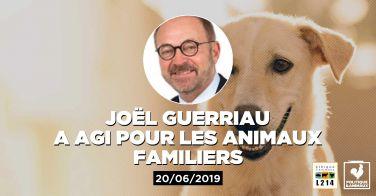 Logo Le sénateur Joël Guerriau demande au gouvernement d'intervenir auprès de la Chine pour mettre fin au festival de Yulin où des chiens et des chats sont massacrés