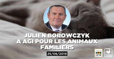 Logo Le député Julien Borowczyk demande la mise en place d'une stérilisation obligatoire des chats domestiques et libres